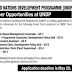 United Nations Development Programme (UNDP) Islamabad Jobs
