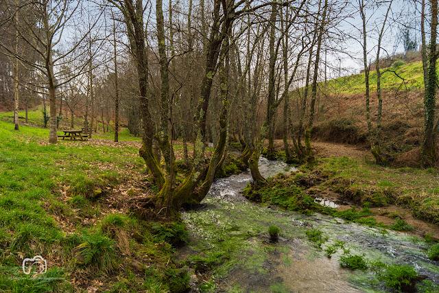 Paseo fluvial de Gatomorto