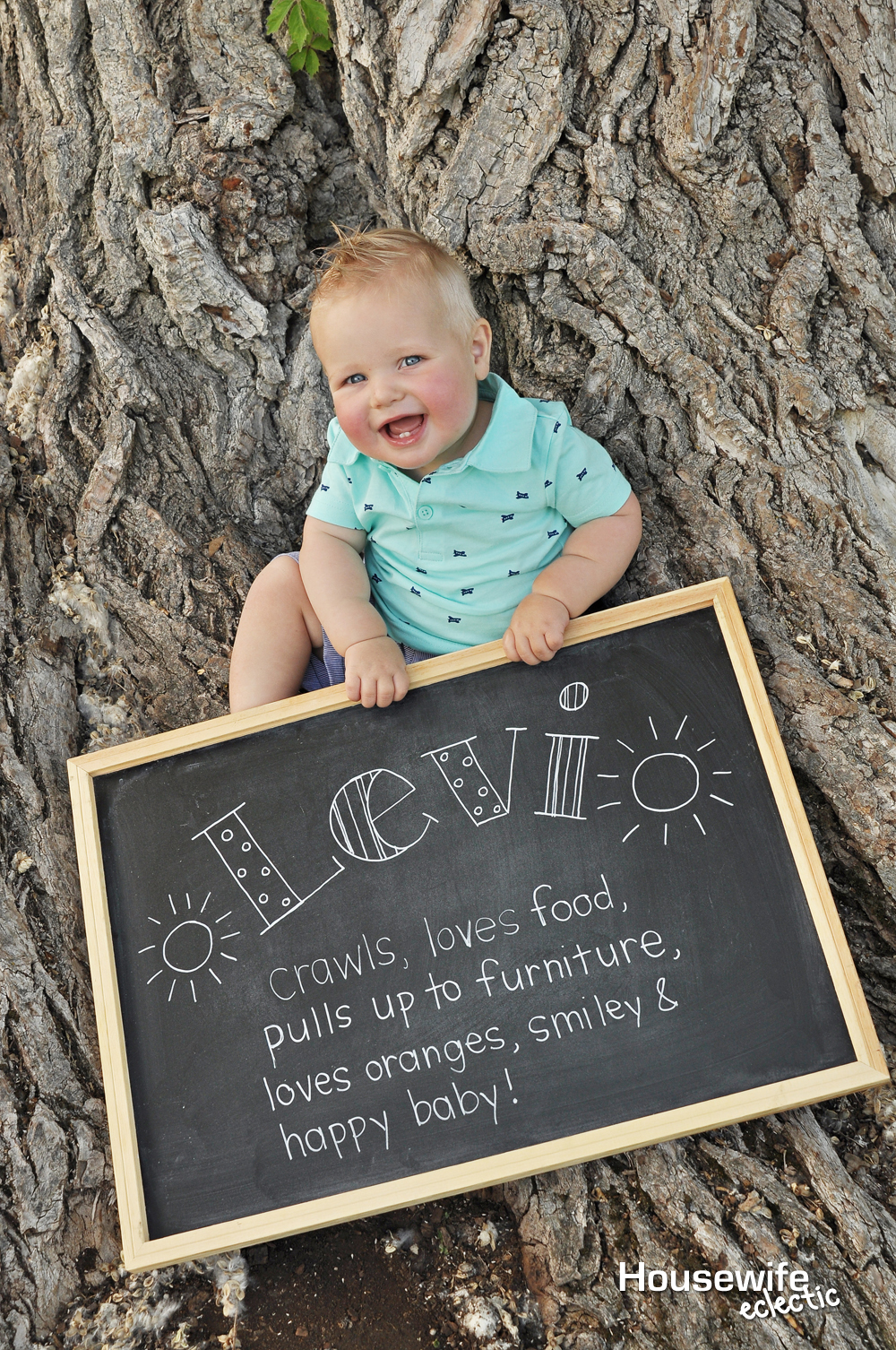 Tips For A Perfect Diy 1 Year Old Photo Shoot Housewife Eclectic