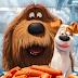Pets é uma animação adorável e engraçada sobre animais de estimação e amizade