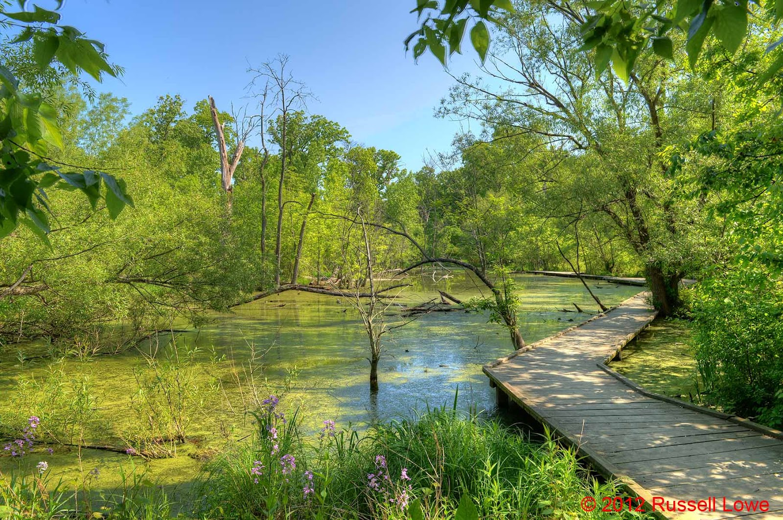 quotThe Way I See Itquot Russ Lowe Nikon D4 HDR Images from