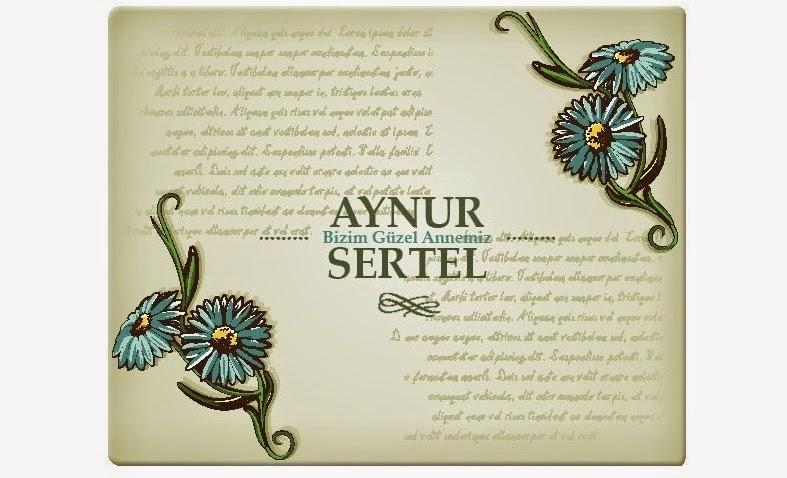 anneye_ozel_amerikan_servis