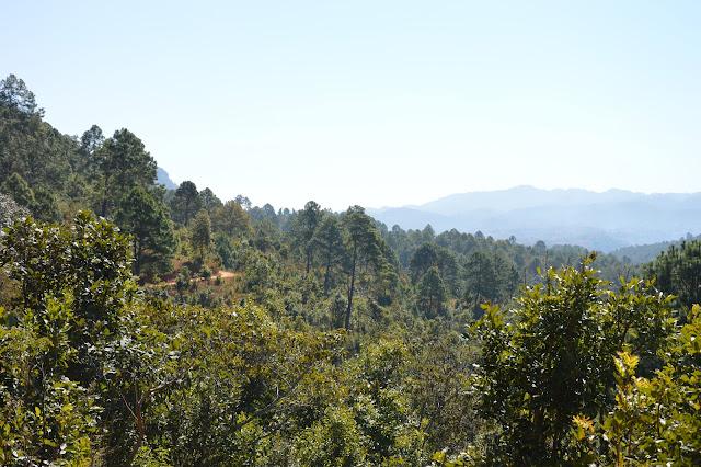 Vallée dans la région de Kalaw
