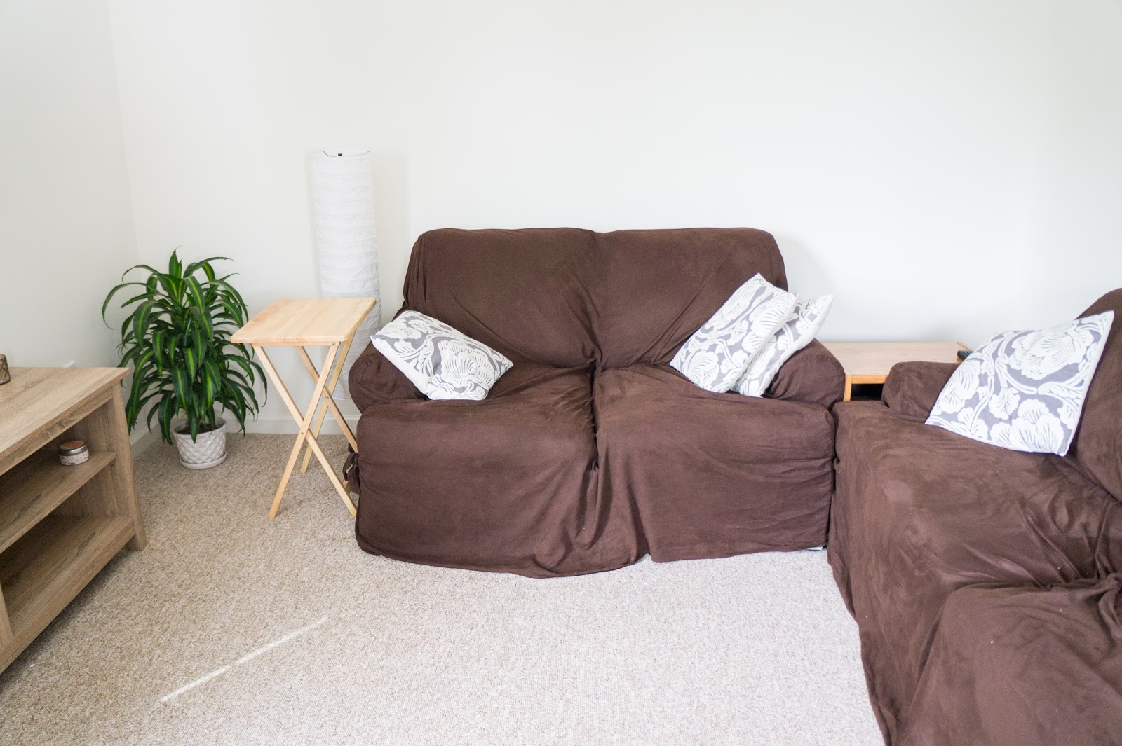 Couch with pillows, an end table, lamp, and a plant in the corner.