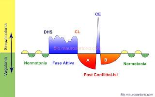 Curva bifasica delle 5 Leggi Biologiche del dott.Hamer