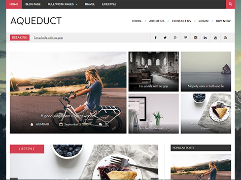 Aqueduct Free Magazine WordPress Theme