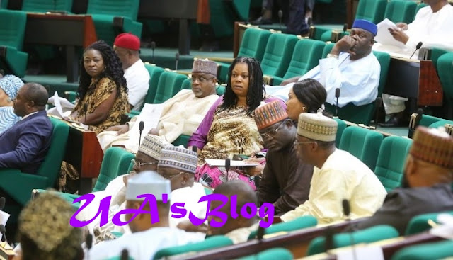 House Of Reps Member Stoned, Chased Out Of Constituency