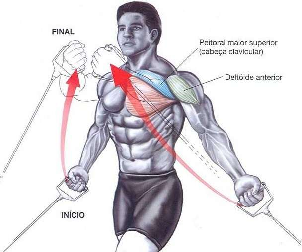 Best Chest Exercises for Mass - all-bodybuilding.com