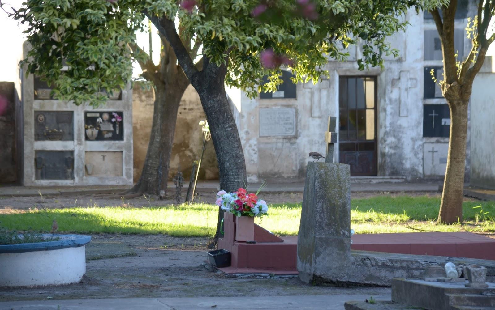 Cementerio de Matilde