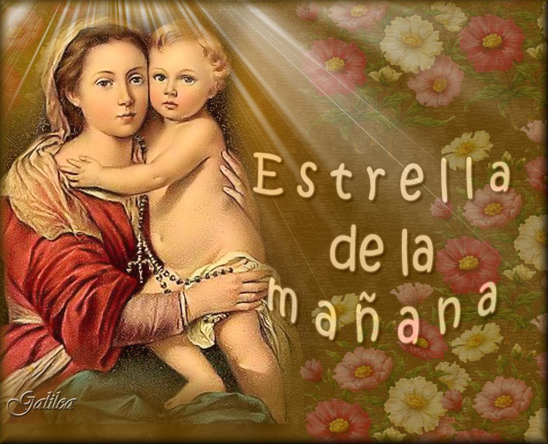 Santa María, Madre de Dios y Madre nuestra: Estrella de la mañana