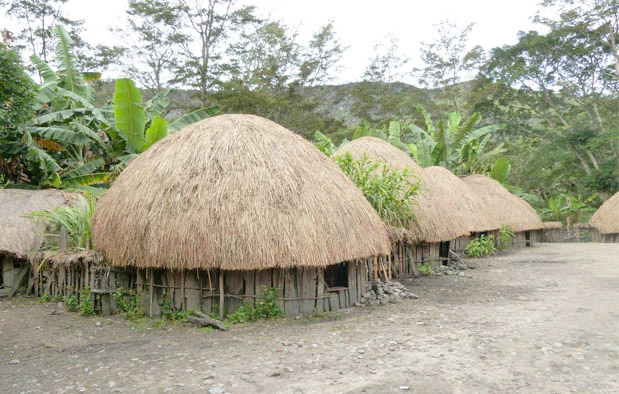Rumah Honai, Rumah Adat Provinsi Papua