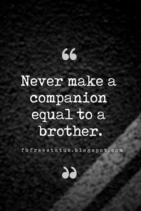 quotes for your brother, Never make a companion equal to a brother.