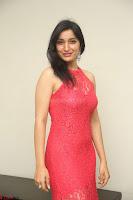 Sakshi Kakkar in Red Legsplit Sleeveless Gown at Dare movie Press meet ~  Exclusive 019.JPG