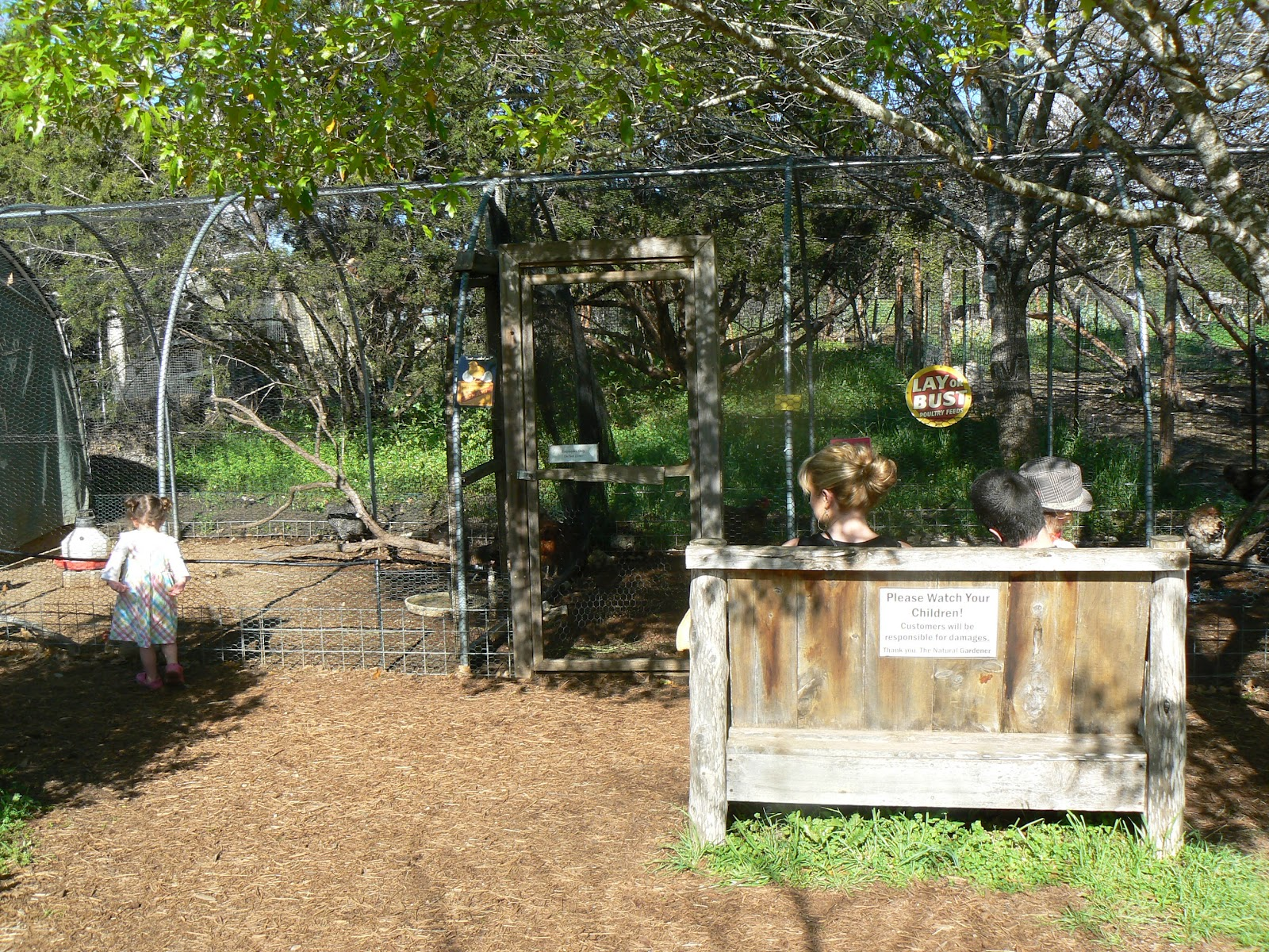 (In Quite Possibly The Most Beautiful Swinging Location In Austin  Right  Next To The Herb Garden And Fountain.