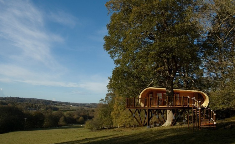 Here is The Best Tree House I Ever Seen Will Make You Rethink Your Priorities
