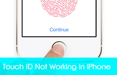 Touch ID Not Working in iPhone