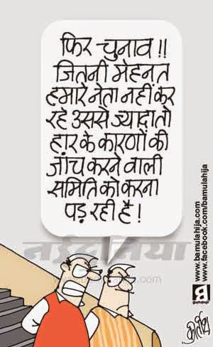 congress cartoon, election 2014 cartoons, election cartoon, assembly elections 2014 cartoons, jammu kashmir, jharkhand, cartoons on politics, indian political cartoon
