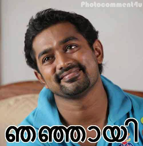Photocomment4u: Top Malayalam Funny Dialogues Of the Month