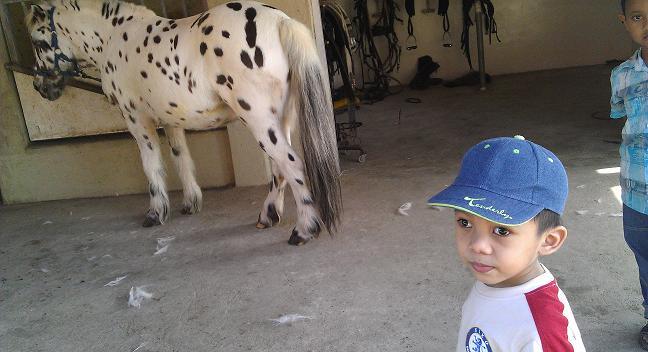 Berlatih kuda di TER Endurance