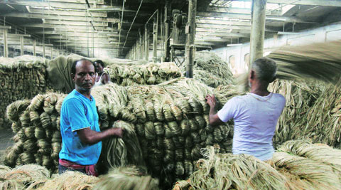 bangladesh jute industry Issues of jute mills, opportunities and challenges faced by the jute manufacturing industry, and possible policy options with a view to develop a viable and an efficient jute manufacturing sector in the country.
