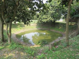 Small Pond Sonarga