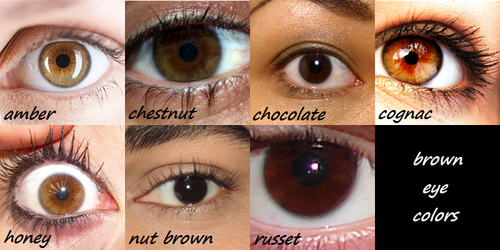 Cassel Crew What Color Are Your Eyes