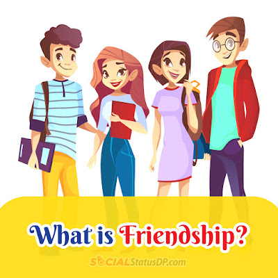What is friendship? know more about friendship - SocialStatusDP.com