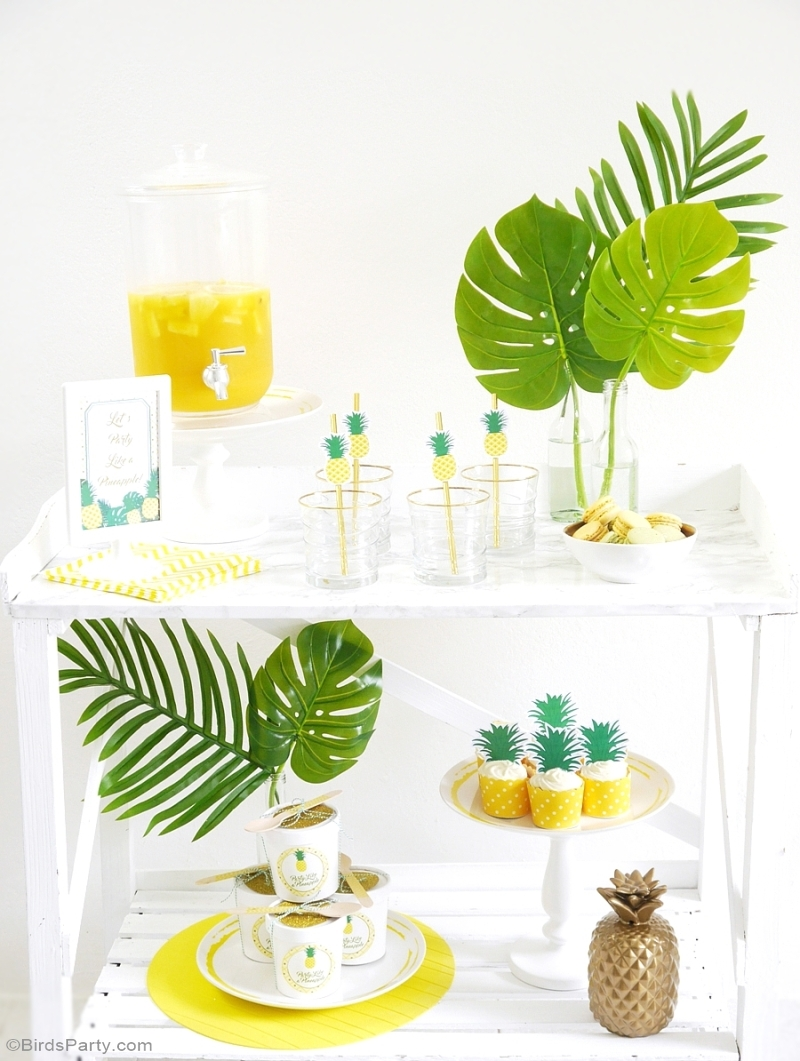 Party Like a Pineapple Birthday DIY Cocktail & Drinks Bar - BirdsParty.com
