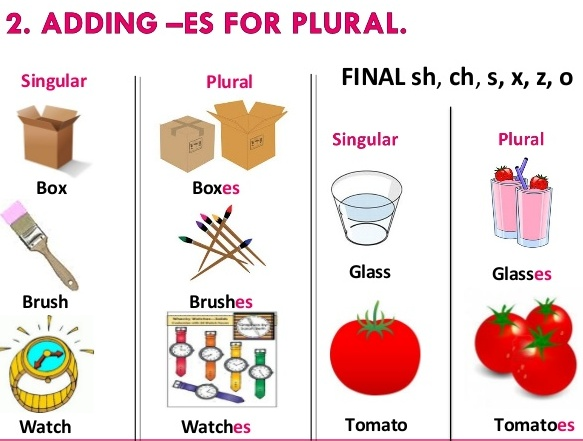 lesson plan in english nouns plural in form Grammar lesson covering the plural of different than in english in english, plurals are formed simply feminine nouns form their plural by simply.