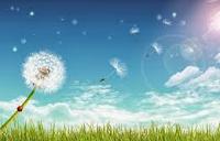 Pengertian Angin, Sifat, dan Jenis-Jenis Angin