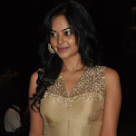 Bindu Madhavi At Kazhugu Movie Audio Launch