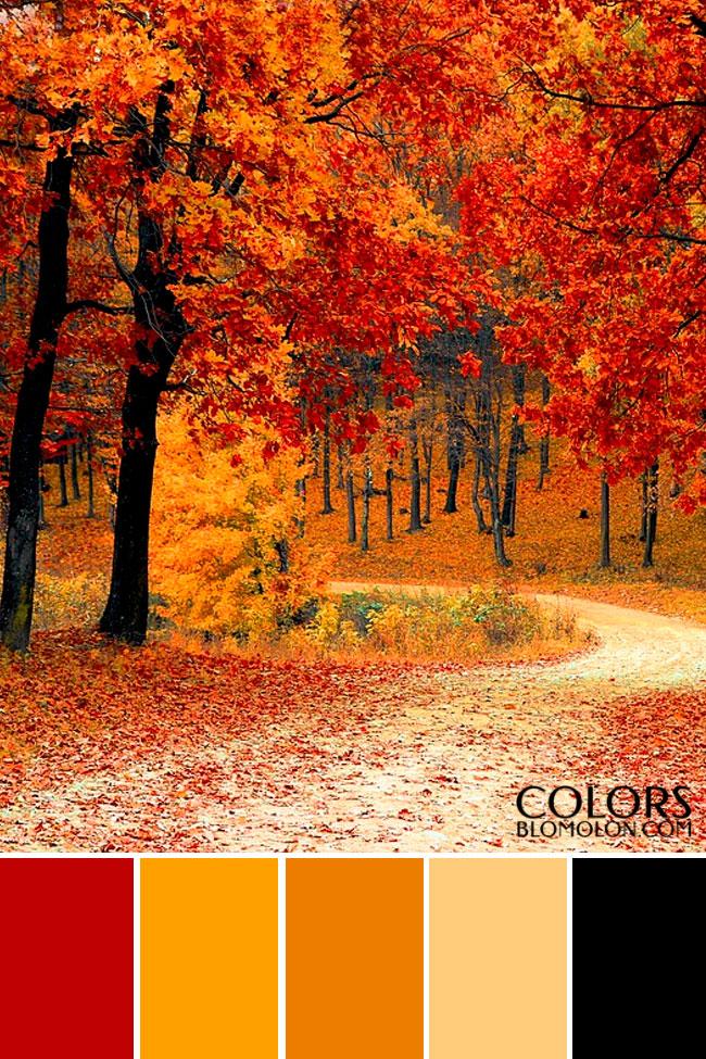 paletas_de_colores_mes_de_septiembre_6