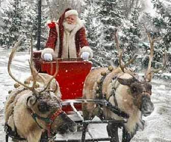 Renne Di Babbo Natale Nomi.Nel Bello Delle Mamme Le Renne Di Babbo Natale
