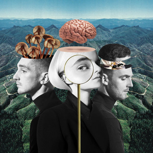 Clean Bandit - What Is Love 2018 ( Free Download ) - ALBUM MUSIK