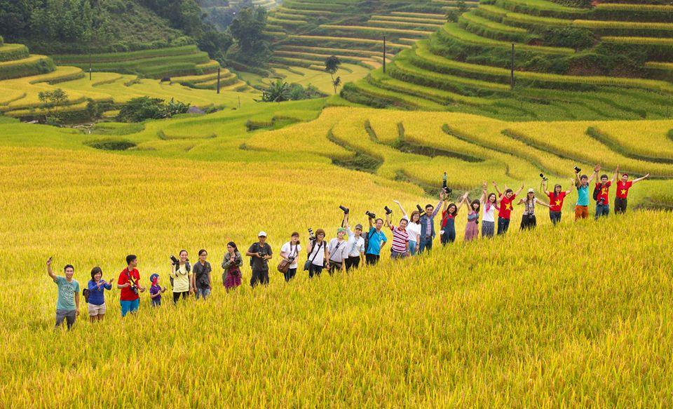 Tour ghép Mùa Lúa Chín Hoàng Su Phì   HA GIANG TRẺ TRAVEL - TOUR DU LỊCH HÀ  GIANG CHUYÊN SÂU VÀ CHUYÊN NGHIỆP CHO MỌI NGƯỜI