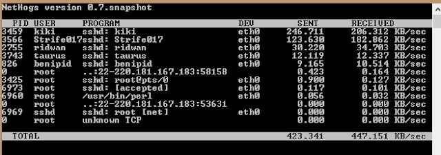 monitoring bandwidth, order vps sg.gs, XEN VPS/ CLOUD SERVER, OPENVZ VPS, Install NETHOGS