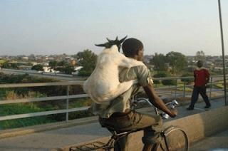 smiješna slika Afrikanca s jarcem