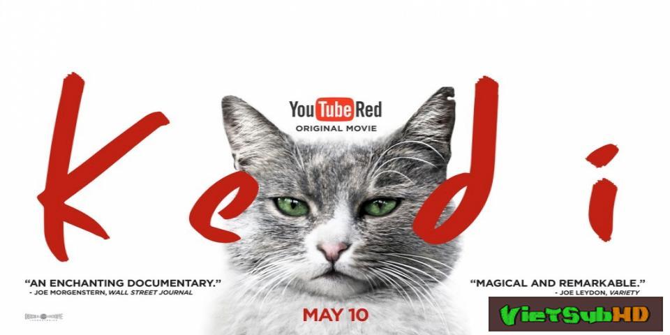 Phim Thế Giới Loài Mèo VietSub HD | Kedi 2017