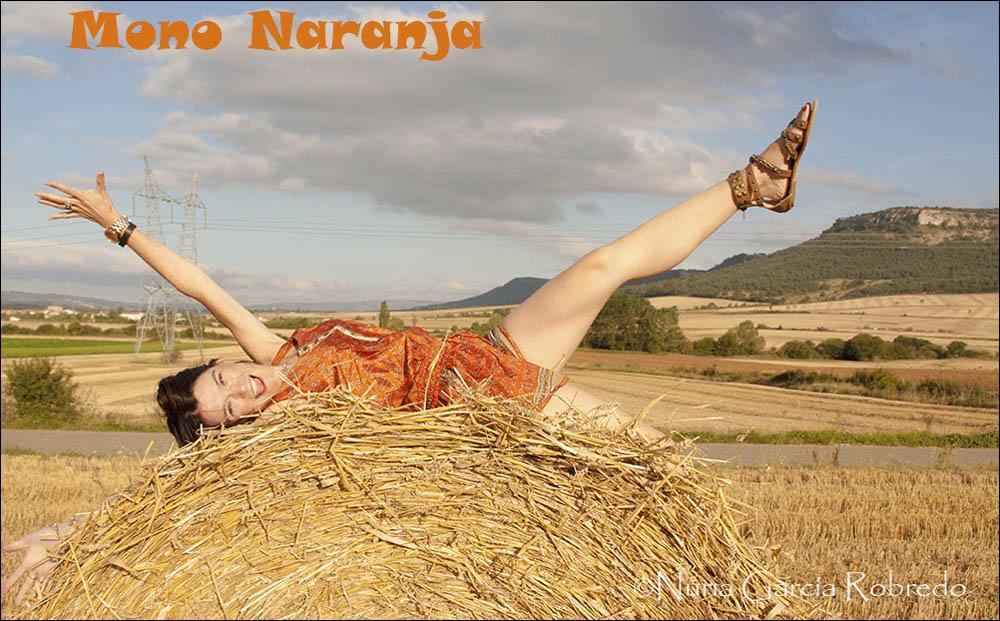mono naranja