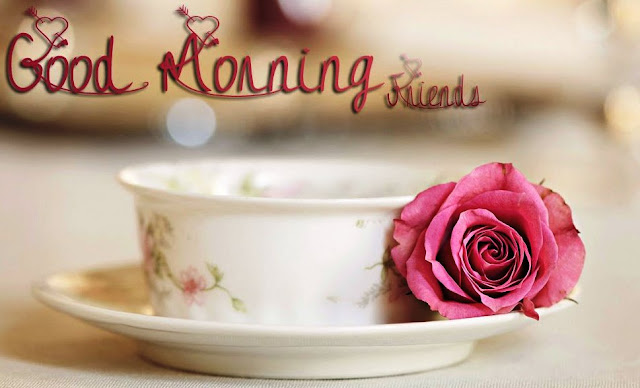 good morning rose images download