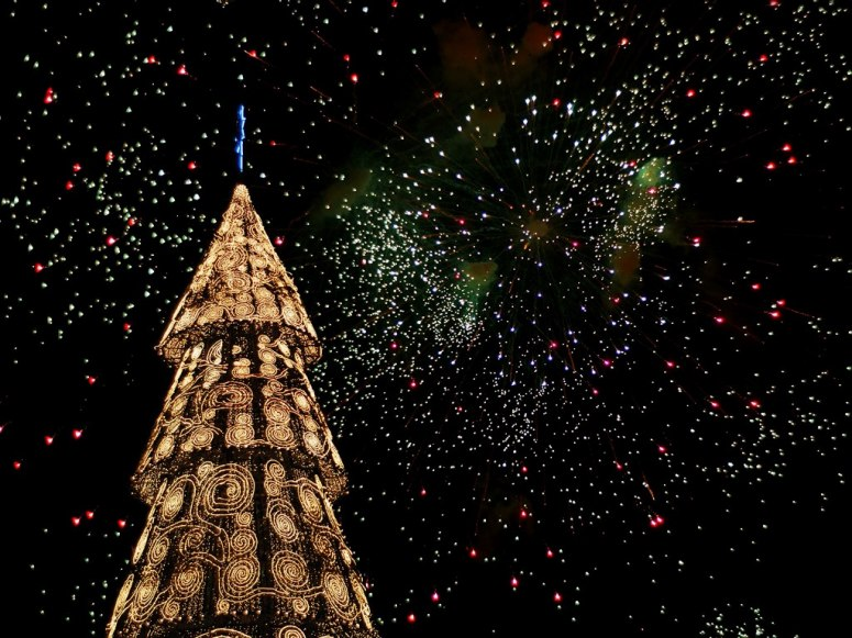 All The Days Ordained: The Most Unusual Christmas Trees