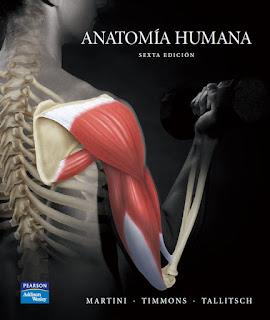 Anatomía Humana - 6ta Edición – Martini, Timmons y Tallitsch