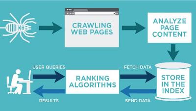 Cara Kerja Mesin Pencari Google: Crawling, Indexing, Ranking