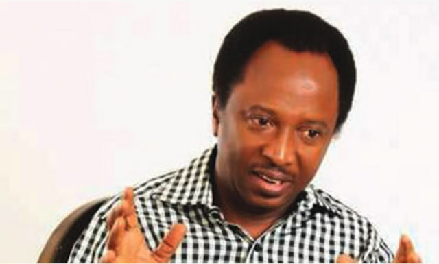 Biafra: How FG can deal with agitators – Senator Shehu Sani
