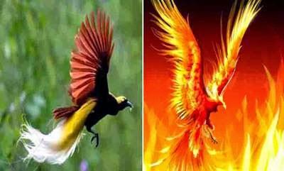 6 hewan yang masih hidup di indonesia mirip hewan mitologi berita rh seputarberita8899 blogspot com