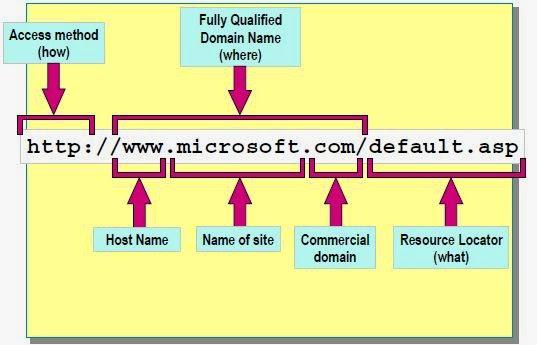 Pengertian Dan Contoh URL