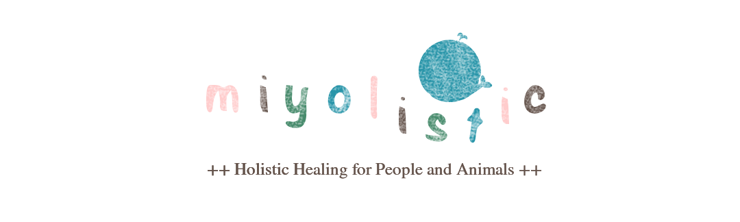 miyolistic ++ Holistic Healing for People and Animals ++