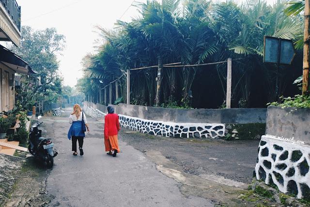 wisata edukasi salak di desa pancoh jogja