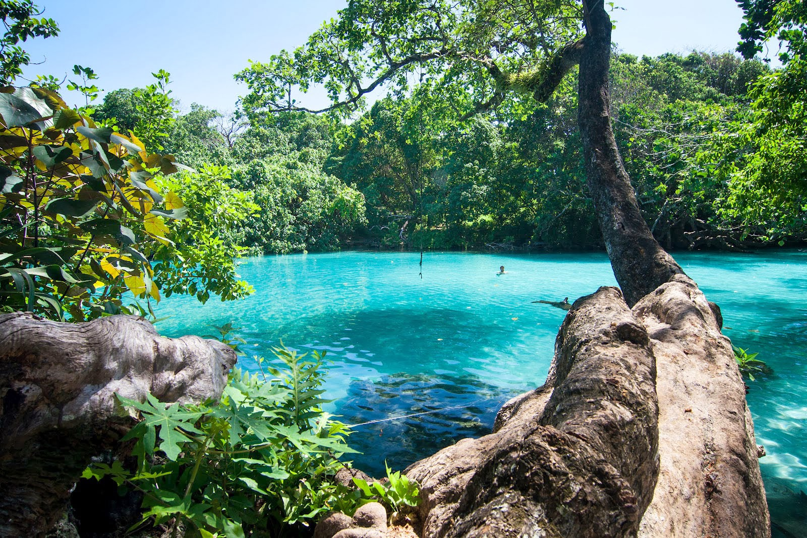 jamaica place places visit most lagoon travel vacation vacations beauty tourist traveling jamacia beach