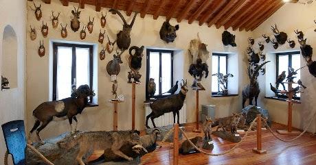Castello Di Cartone Art Attack : Art attack italiano videos art attack italiano clips clipzui